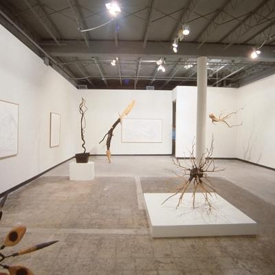 https://pazdabutler.com/upload/exhibitions/_-title/1986_Surls_1s.jpg
