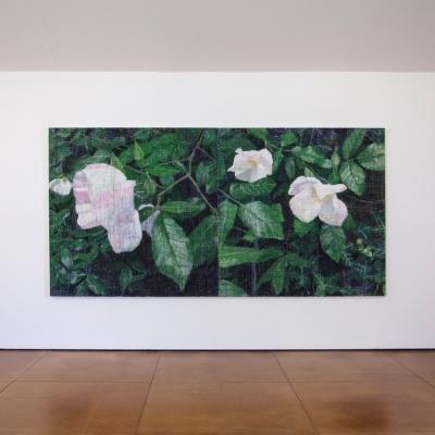 https://hirambutler.com/upload/exhibitions/_-title/Bartlett_Installation_1.jpeg