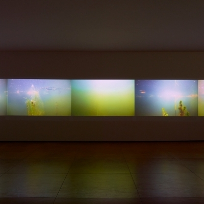 https://hirambutler.com/upload/exhibitions/_-title/CF059057.jpeg