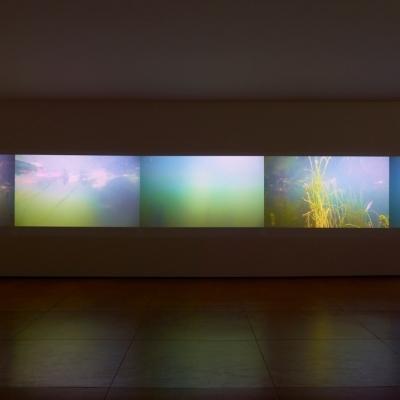 https://hirambutler.com/upload/exhibitions/_-title/CF059069.jpeg