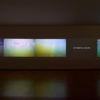 https://hirambutler.com/upload/exhibitions/_-title/CF059075.jpeg