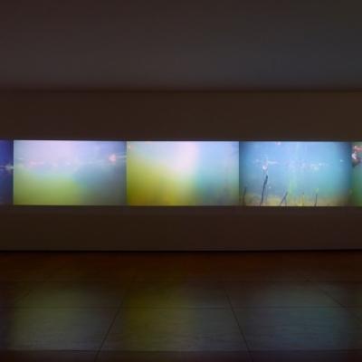 https://hirambutler.com/upload/exhibitions/_-title/CF059078.jpeg