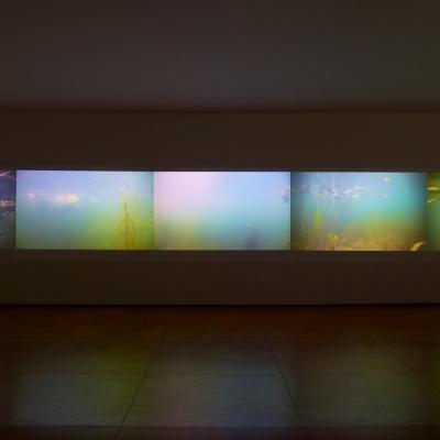 https://hirambutler.com/upload/exhibitions/_-title/CF059079.jpeg