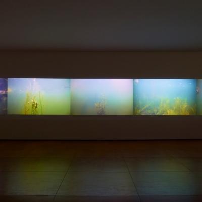 https://hirambutler.com/upload/exhibitions/_-title/CF059082.jpeg