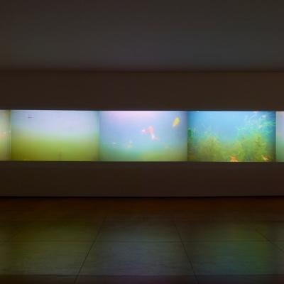 https://hirambutler.com/upload/exhibitions/_-title/CF059087.jpeg