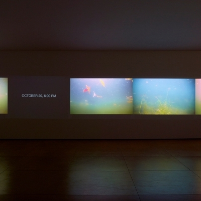https://hirambutler.com/upload/exhibitions/_-title/CF059088.jpeg