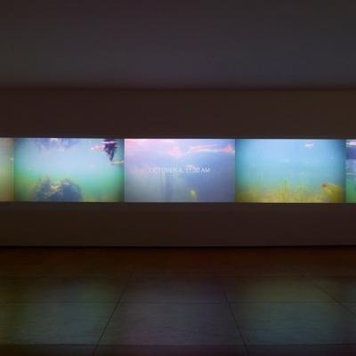 https://hirambutler.com/upload/exhibitions/_-title/CF059091.jpeg