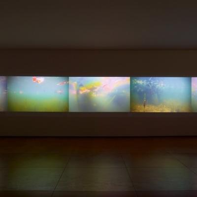 https://hirambutler.com/upload/exhibitions/_-title/CF059096b.jpeg