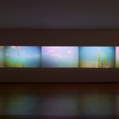 https://hirambutler.com/upload/exhibitions/_-title/CF059100.jpeg