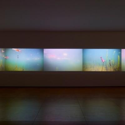 https://hirambutler.com/upload/exhibitions/_-title/CF059101.jpeg