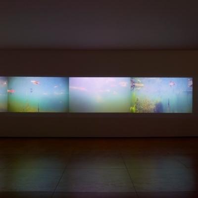 https://hirambutler.com/upload/exhibitions/_-title/CF059103.jpeg