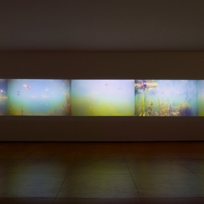 https://pazdabutler.com/upload/exhibitions/_-title/CF059106.jpeg