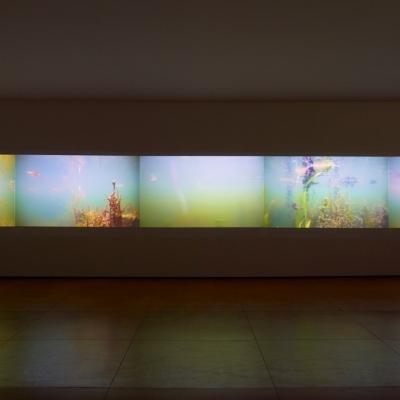 https://hirambutler.com/upload/exhibitions/_-title/CF059109.jpeg