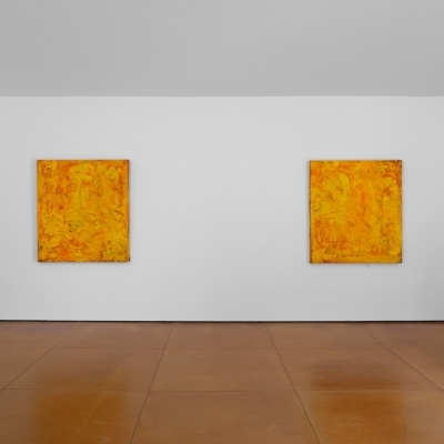 https://pazdabutler.com/upload/exhibitions/_-title/CF070097.jpeg