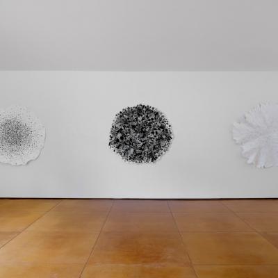 https://pazdabutler.com/upload/exhibitions/_-title/CF099244.jpeg
