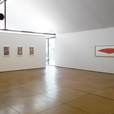 https://hirambutler.com/upload/exhibitions/_-title/CF114662_copy.jpg