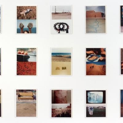 https://pazdabutler.com/upload/exhibitions/_-title/CF184488edit.jpeg
