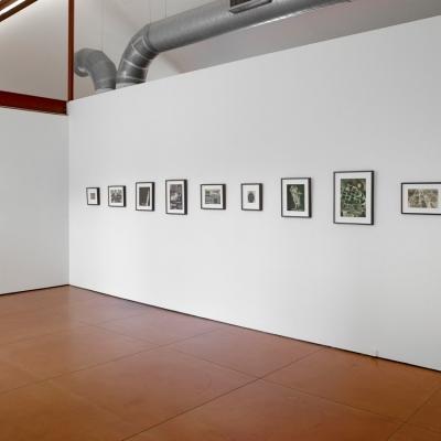https://pazdabutler.com/upload/exhibitions/_-title/Dana_Harper_Point_of_Departure.jpeg