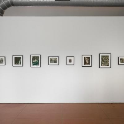 https://pazdabutler.com/upload/exhibitions/_-title/Dana_Harper_Point_of_Departure_1.jpeg