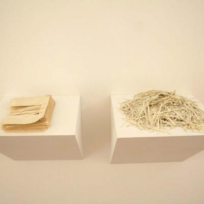 https://hirambutler.com/upload/exhibitions/_-title/Joe_Havel_02.jpg