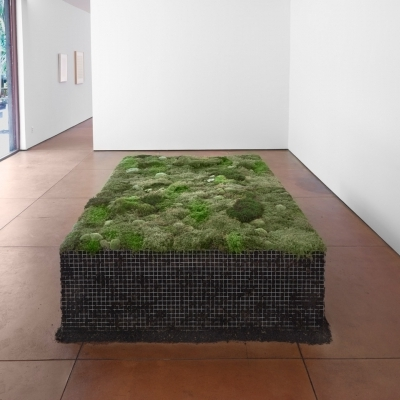 https://pazdabutler.com/upload/exhibitions/_-title/Meg_Webster_Hiram_Butler.jpeg