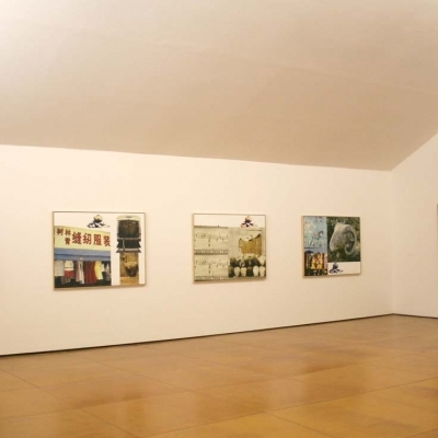 ROBERT RAUSCHENBERG: The Lotus Series