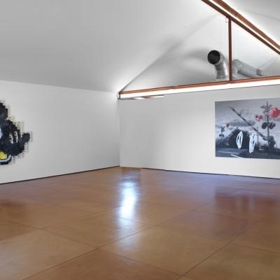 https://pazdabutler.com/upload/exhibitions/_-title/Vernon_Fisher_HBG_8.jpeg