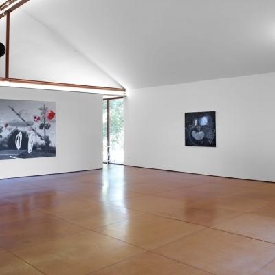 https://pazdabutler.com/upload/exhibitions/_-title/Vernon_Fisher_HBG_9.jpeg