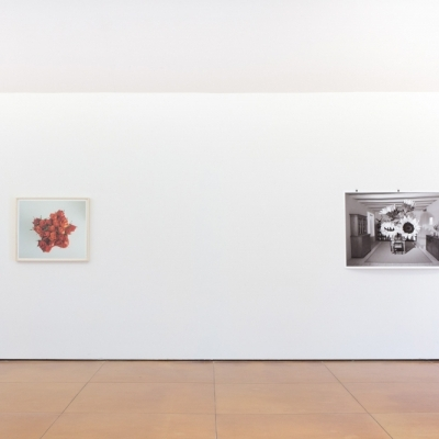https://hirambutler.com/upload/exhibitions/_-title/bower_2.jpg