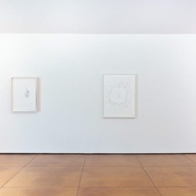 https://pazdabutler.com/upload/exhibitions/_-title/bower_3.jpg