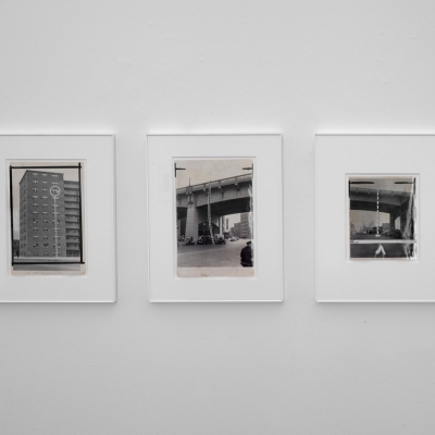 https://pazdabutler.com/upload/exhibitions/_-title/mmoss2.jpg