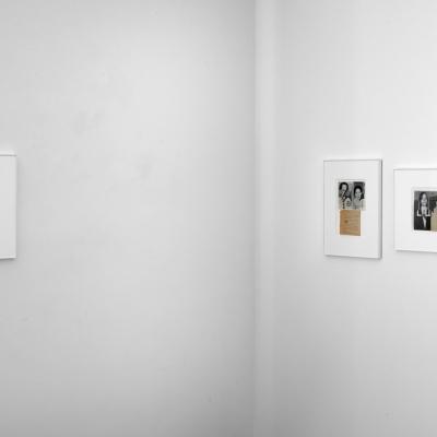 https://pazdabutler.com/upload/exhibitions/_-title/mmoss4.jpg