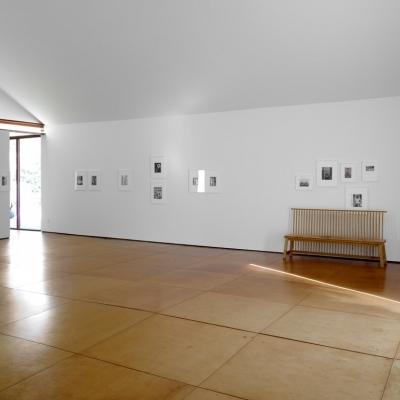 https://pazdabutler.com/upload/exhibitions/_-title/mmoss8.jpg