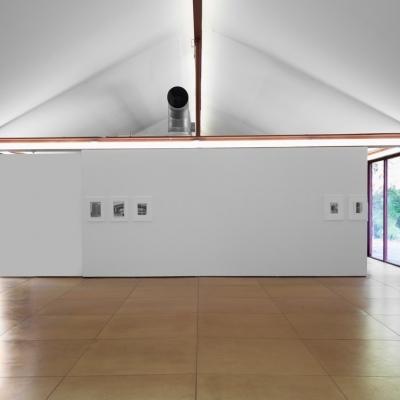 https://hirambutler.com/upload/exhibitions/_-title/moss2.jpeg