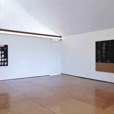 https://hirambutler.com/upload/exhibitions/_-title/tolbert_5.jpg