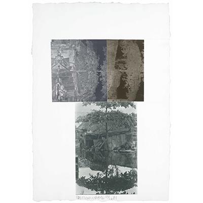 https://hirambutler.com/upload/exhibitions/_-title/RobertRauschenberg_81.E03_1981_RazorbackBunchEtchingIII%402x_.jpeg
